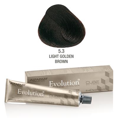 Evolution nr 5.3