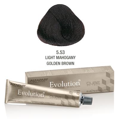 Evolution nr 5.53
