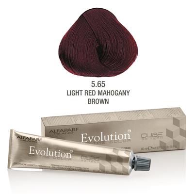 Evolution nr 5.65