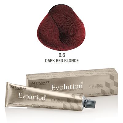 Evolution nr 6.6