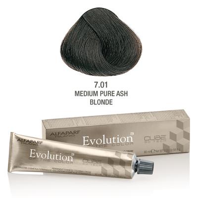 Evolution nr 7.01