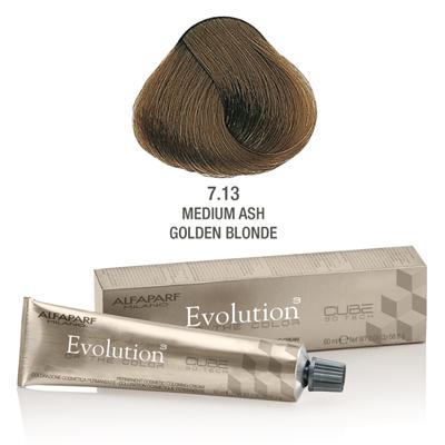 Evolution nr 7.13