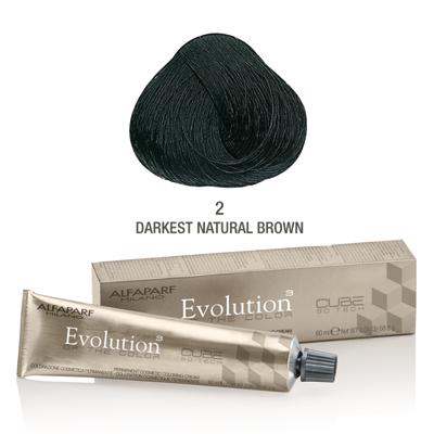 Evolution nr 2