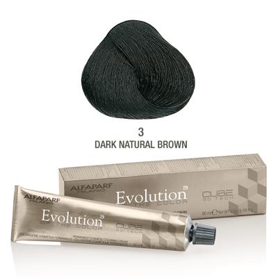 Evolution nr 3