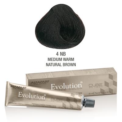 Evolution nr 4NB
