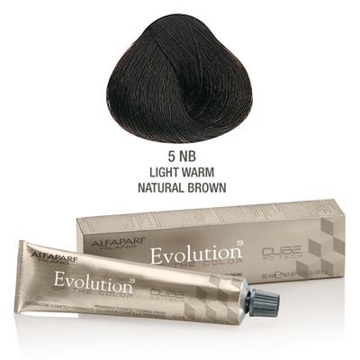 Evolution nr 5 NB