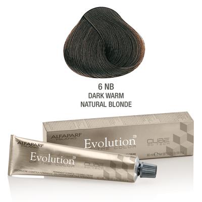 Evolution nr 6NB