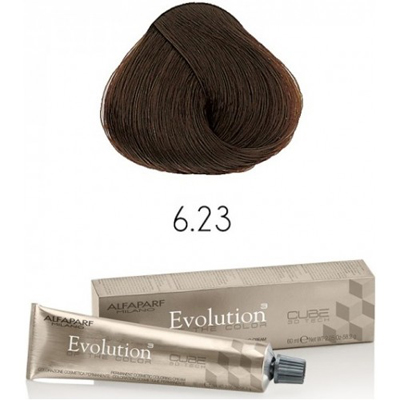 Evolution nr 6.23