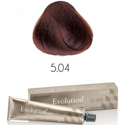Evolution nr 5.04