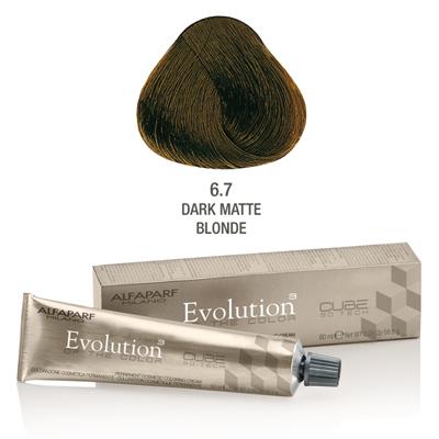 Evolution nr 6.7