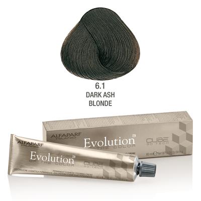 Evolution nr 6.1