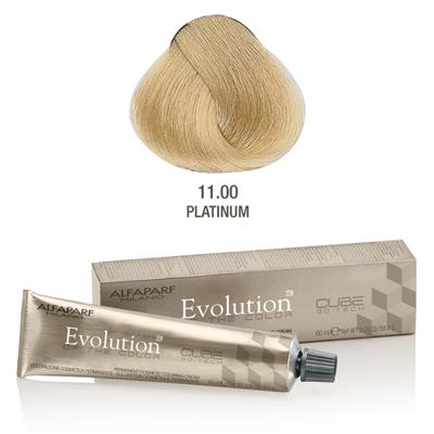 Evolution nr 11.00
