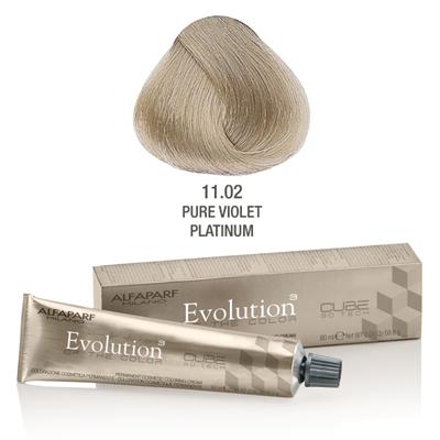 Evolution nr 11.02
