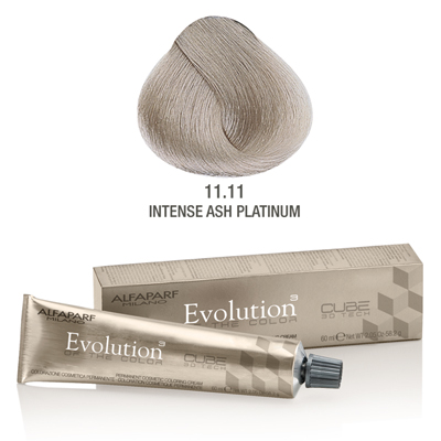Evolution nr 11.11