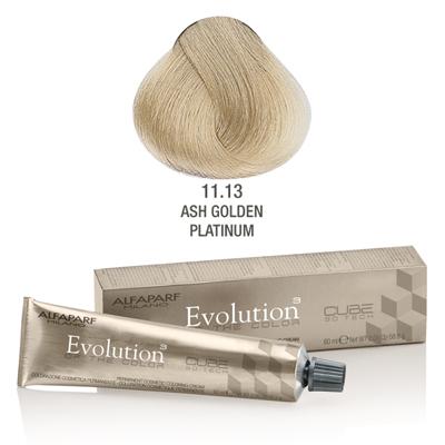 Evolution nr 11.13