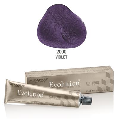 Evolution nr 2000