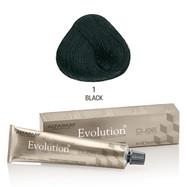 Evolution nr 1