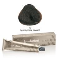 Evolution nr 6