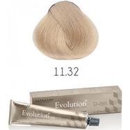 Evolution nr 11.32