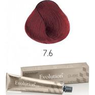 Evolution nr 7.6